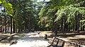 Castle park - panoramio.jpg