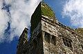 Castles of Munster, Leamaneh, Clare (4) - geograph.org.uk - 1952537.jpg