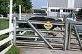 Cattle crossing.jpg