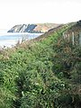 Ceredigion Coast Path, a less trodden section - geograph.org.uk - 998665.jpg