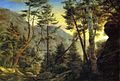 Charles De Wolf Brownell -The Pinkham Notch, White Mountains.jpg