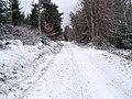 Chemin Des Seigneurs Sous La Neige-St Georges En Couzan.jpg