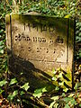 Chenstochov ------- Jewish Cemetery of Czestochowa ------- 78.JPG