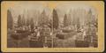 Chestnut Hill, Greenwood Cemetery, Brooklyn, N.Y, by Kilburn Brothers.png