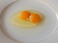 kippenei eiwit
