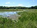Circle Lake - panoramio.jpg