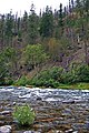 Clackamas Wild and Scenic River (27905340512).jpg