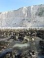 Cliffs near Saltdean - geograph.org.uk - 1205004.jpg