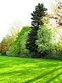 Corby, UK - panoramio (26).jpg