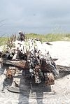 Core Banks shipwreck - 2013-06 - 1.JPG