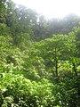 Costa Rica (6094542854).jpg