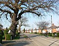 Cropston Road, Anstey. - geograph.org.uk - 384846.jpg