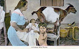 Human–animal breastfeeding - A nurse in Cuba using a goat to suckle a baby, 1903