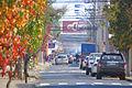 Curico, calle Montt (9011456272).jpg
