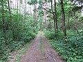 Dūkštų sen., Lithuania - panoramio (90).jpg