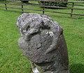 Dacre Bear or Lion, fine detail of predator, post, body and head, Cumbria, UK.jpg