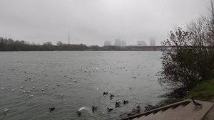 File:Danube Vienna December 2014.webm