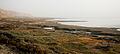 Dead Sea (3272129984).jpg