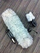 Меховая ветрозащита (разговорное «собака»; в английском языке используются термины «дохлая кошка» (dead cat) или «дохлый котёнок» (dead kitten), в зависимости от размера. Самая эффективная защита от шума ветра. Надевается на жесткий кожух «цеппелин».