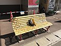 Decorated bench 20170714-1.jpg