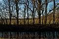 Den Helder - Linieweg - View NW II.jpg