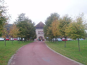 Denbies Wine Estate - Driveway approaching visitor centre