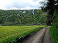 """Der Schaufelsen bei Hausen im Tal. Naturpark Oberes Donautal, """"Der Schwäbische Grand Canyon"""". Donauradweg (Danube Bike Path) east of Beuron, in Baden-Württemberg, Germany - panoramio.jpg"""