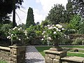 Dewstow Gardens - geograph.org.uk - 659337.jpg