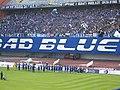 Dinamo BBB 2008.jpg