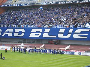 GNK Dinamo Zagreb - Bad Blue Boys tifo display