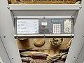 Distributeur Automatique Baguettes Grande Rue Perrex 3.jpg