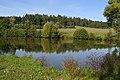 Dobrá Voda (okres Žďár nad Sázavou) - rybník Obecník obr01.jpg