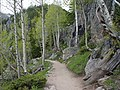Dream Lake Trail - panoramio.jpg