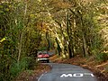 Driving through the trees - geograph.org.uk - 1585453.jpg