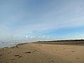 Duinen van Texel3.jpg