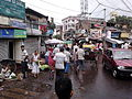 Dum Dum Road - Kolkata 2011-09-11 00548.jpg