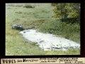 """ETH-BIB-Les Verrières, Grille im Sumpf """"belle Perche""""-Dia 247-13888.tif"""