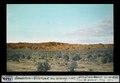 ETH-BIB-Sandstein-Tafelland am Limay, von N.E-Dia 247-01402.tif