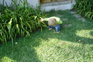 Child hunting for easter eggs in the back yard...
