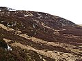 Eastern slopes, Carn Geal - geograph.org.uk - 724160.jpg