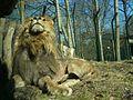 Eberswalde zoo 010.jpg
