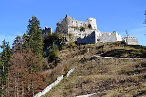 Ehrenberg Castle - Ehrenberg Castle