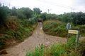El Camí de la Barraqueta.jpg