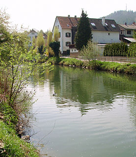 Elsenz River of Baden-Württemberg, Germany