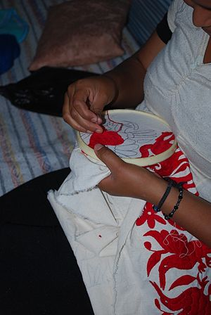 Tenango embroidery - Working on a piece while watching television in the community of Santa Monica, Tenango de Doria
