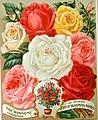 Everything for the garden - 1906 (1906) (14577274097).jpg