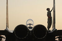 F-15E Strike Eagle postflight inspection.jpg