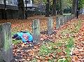 Fallen Superman among fallen leaves - geograph.org.uk - 1575707.jpg
