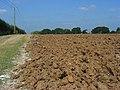 Farmland, Odiham - geograph.org.uk - 956874.jpg