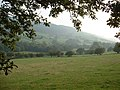Farmland near the A494 - geograph.org.uk - 242546.jpg